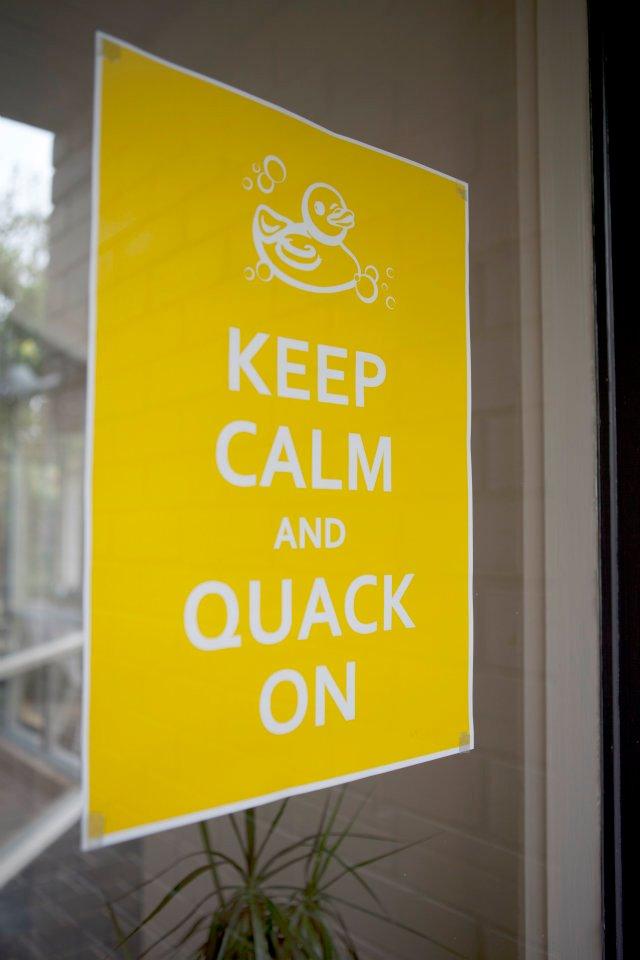 duck14